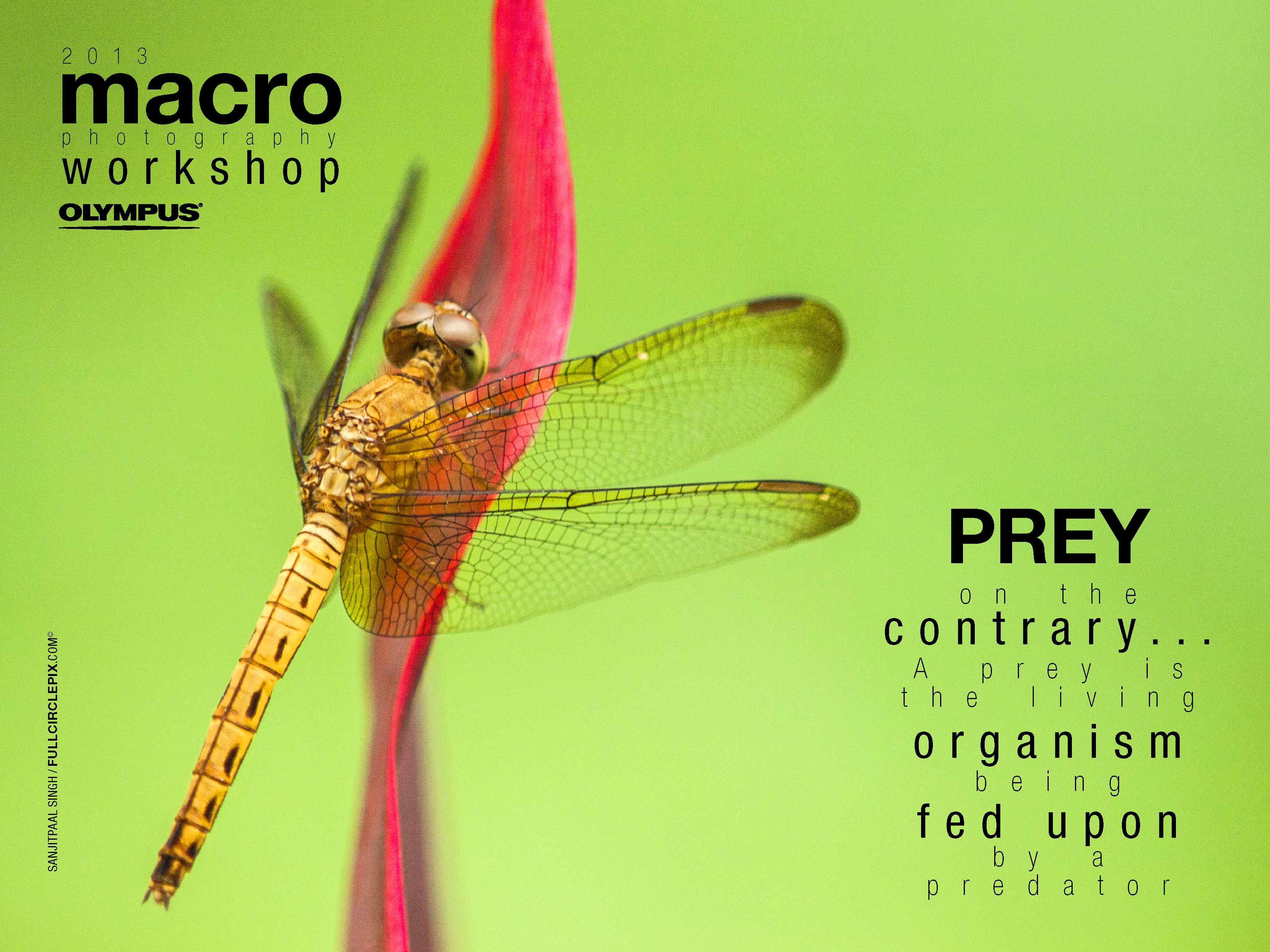 macro workshop2